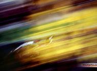 Lamborghini Super Trofeo, two cards to play for Bonaldi Motorsport